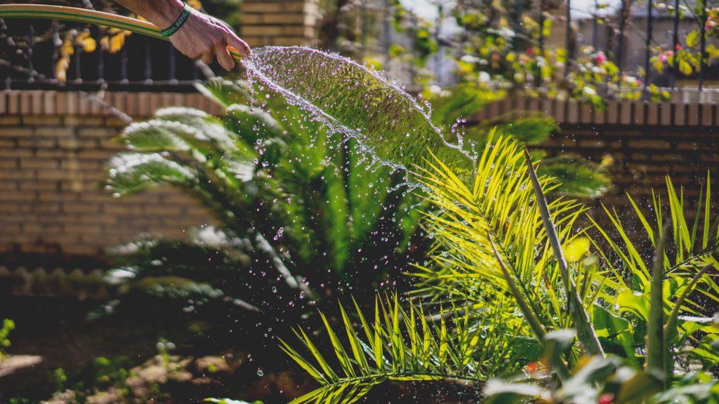 10 consejos para ahorrar agua en tu día a día (II)